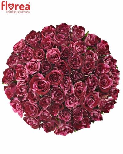 Kytice 55 žíhaných růží RED STORM