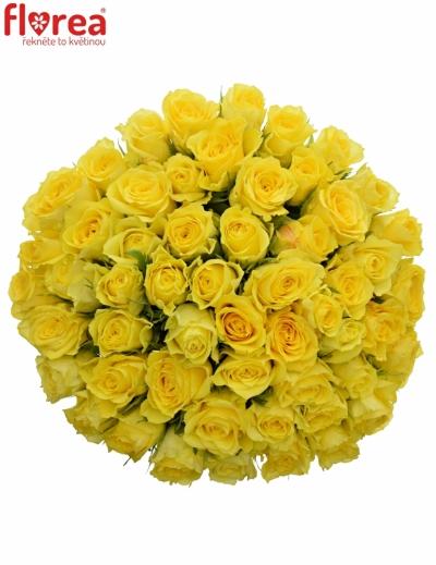 Kytice 55 žlutých růží GOLDEN TOWER 50 cm
