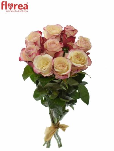 Kytice 9 bílorůžových růží ADVANCE SWEETNESS 40cm