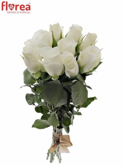 Kytice 9 bílých růží AKITO