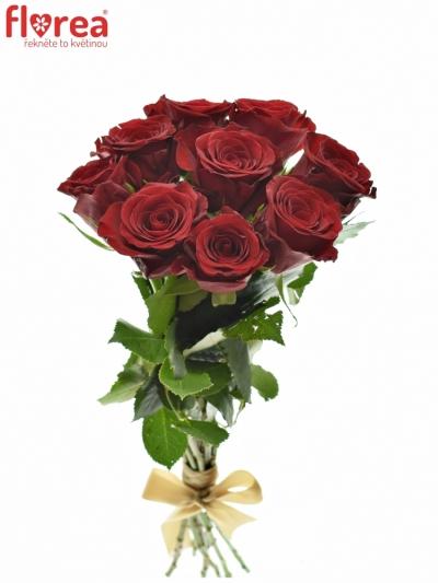 Kytice 9 červených růží MILLION REASONS