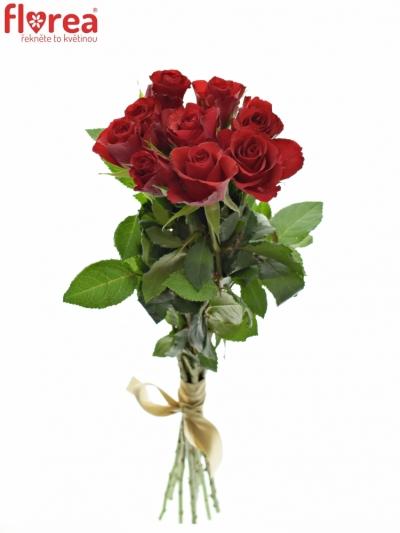 Kytice 9 červených růží RED CALYPSO 60cm