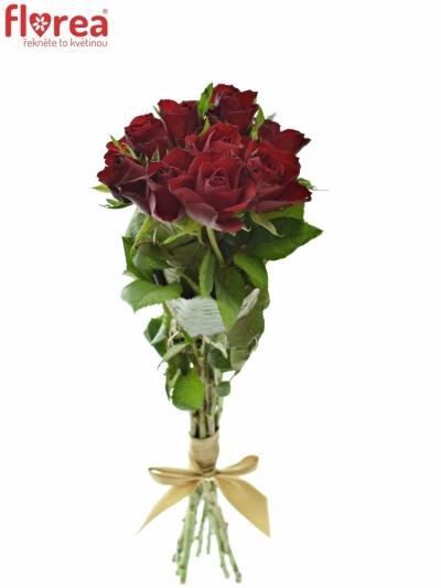 Kytice 9 červených růží RHYTHM 50cm