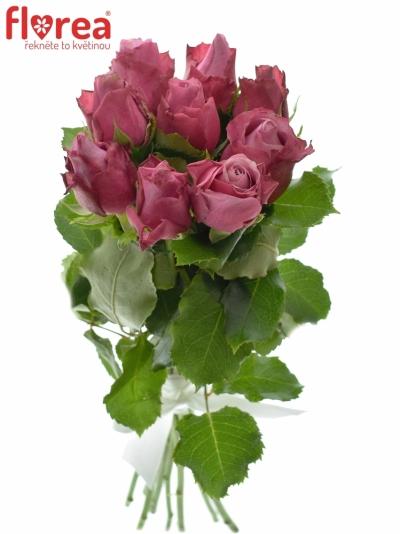 Kytice 9 fialových růží DEEP WATER 40cm