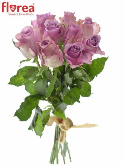 Kytice 9 fialových růží NIGHTINGALE 40cm