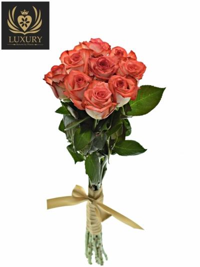 Kytice 9 luxusních růží BLUSH 70cm