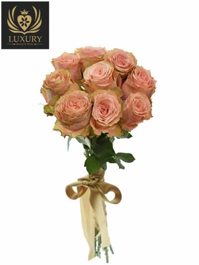 Kytice 9 luxusních růží KAWA+