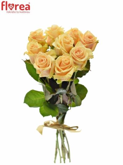 Kytice 9 meruňkových růží PRIMA DONNA