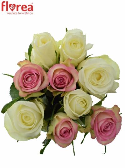 Kytice 9 míchaných růží AGAPA 50cm