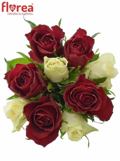 Kytice 9 míchaných růží AHIVIA 50cm