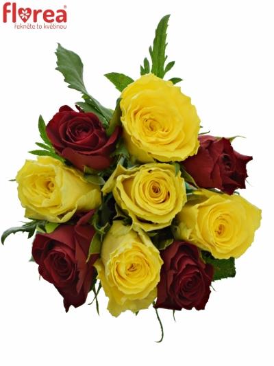 Kytice 9 míchaných růží ANATOLA 35cm