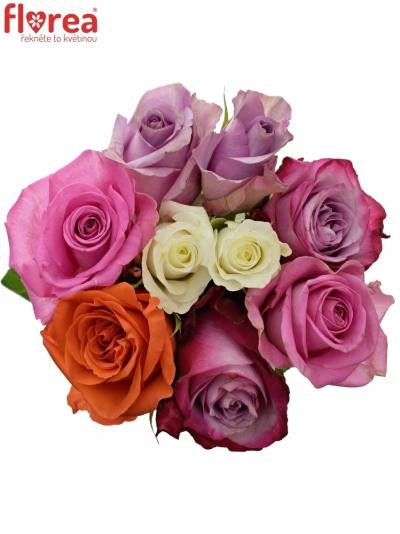 Kytice 9 míchaných růží DOLORRES 40cm