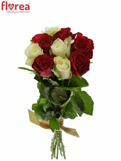 Kytice 9 míchaných růží AGATHA 60cm