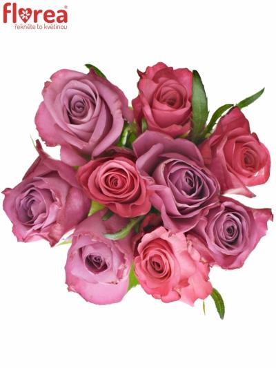Kytice 9 míchaných růží BENAYA 60cm