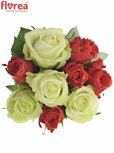 Kytice 9 míchaných růží BRITTANY 35cm