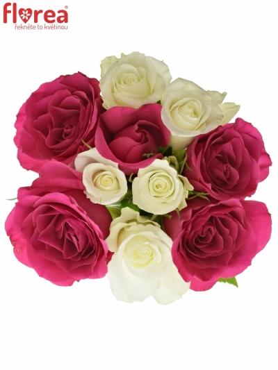 Kytice 9 míchaných růží CRONUS