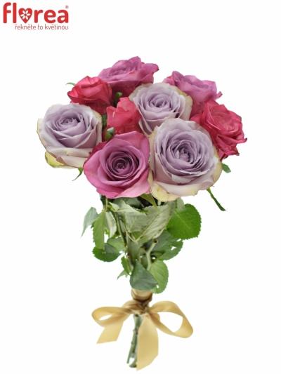 Kytice 9 míchaných růží DARIELLA 40cm
