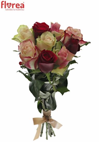 Kytice 9 míchaných růží EBIGALE 35cm