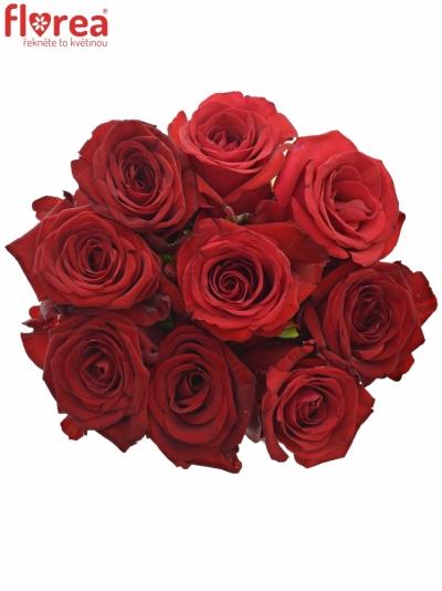 Kytice 9 míchaných růží JOANNA 70cm