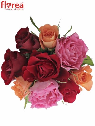Kytice 9 míchaných růží KATRIEL 40cm