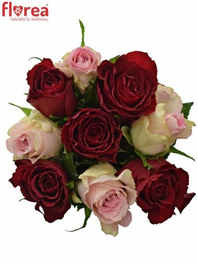 Kytice 9 míchaných růží MADAM BISOU 50cm