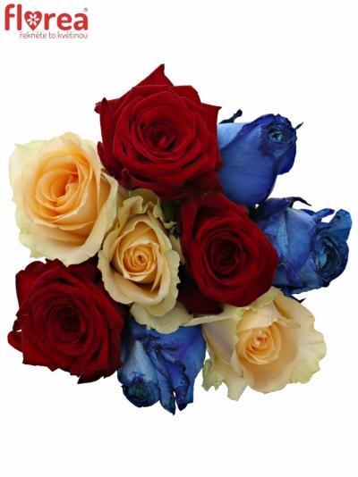 Kytice 9 míchaných růží MARRINETA 50cm