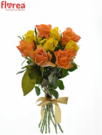 Kytice 9 míchaných růží MARYWALK 50cm