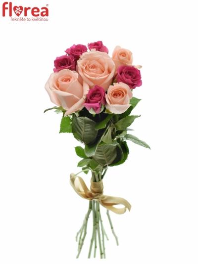 Kytice 9 míchaných růží PINACHE