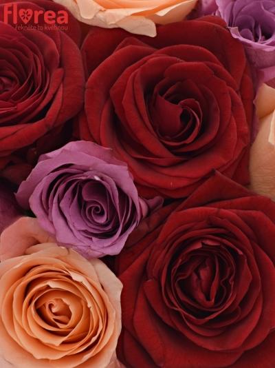 Kytice 9 míchaných růží RED LADY ORLEA 50cm