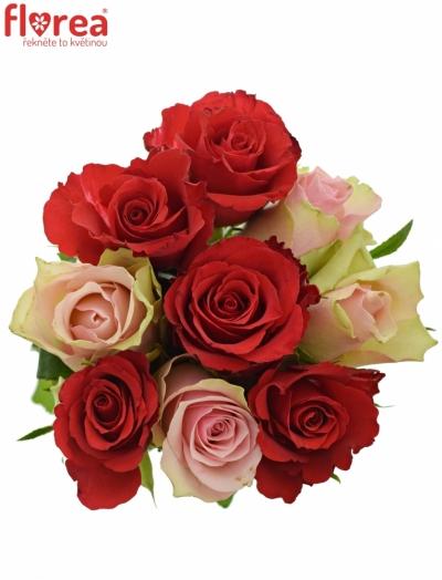 Kytice 9 míchaných růží ROSEBELLINE 50cm