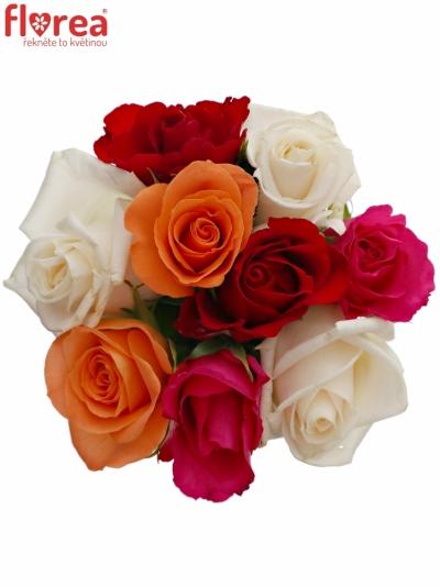 Kytice 9 míchaných růží SEVASTIANOS 40cm