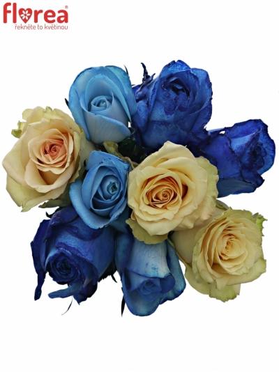 Kytice 9 míchaných růží SKYLA 50cm
