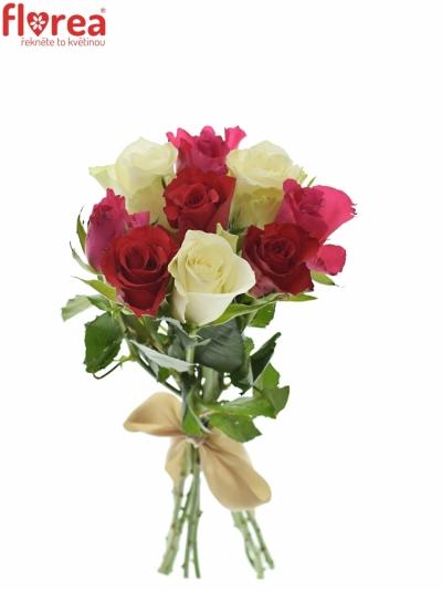 Kytice 9 míchaných růží WHITE GRACIANA 35cm