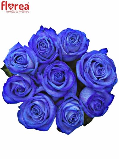 Kytice 9 modrých růží BLUE VENDELA 80cm