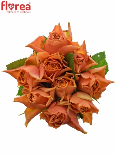 Kytice 9 oranžových růží ARANCIO 40cm