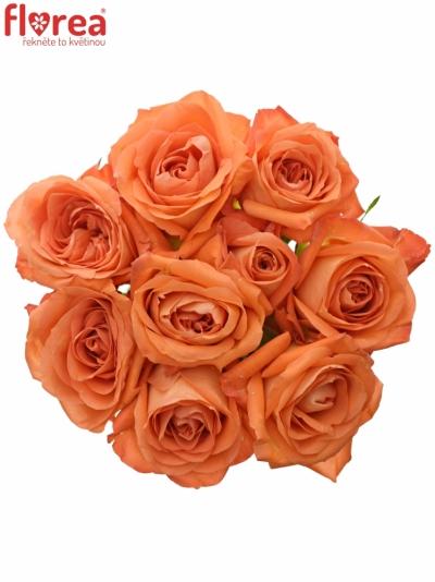 Kytice 9 oranžových růží COPACABANA 50cm