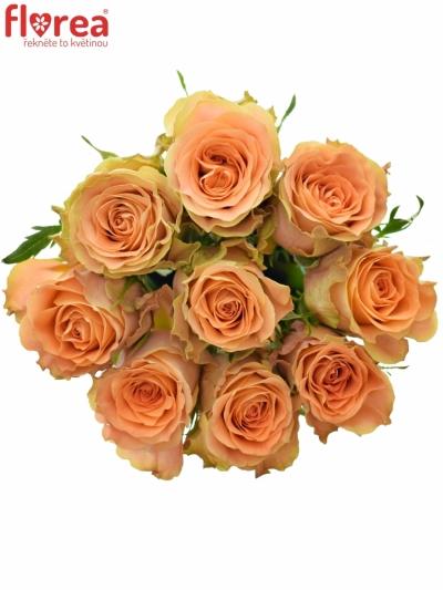 Kytice 9 oranžových růží FLORENTINE