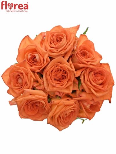 Kytice 9 oranžových růží NARANGA