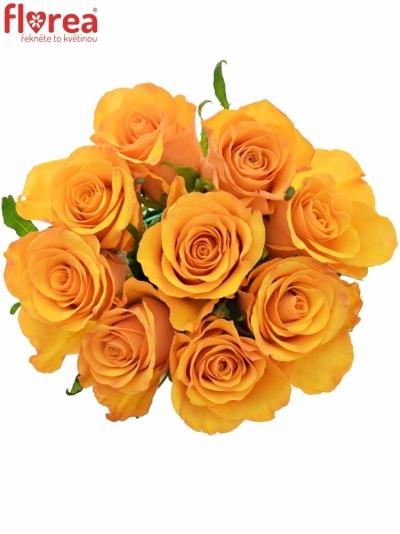 Kytice 9 oranžových růží TYCOON