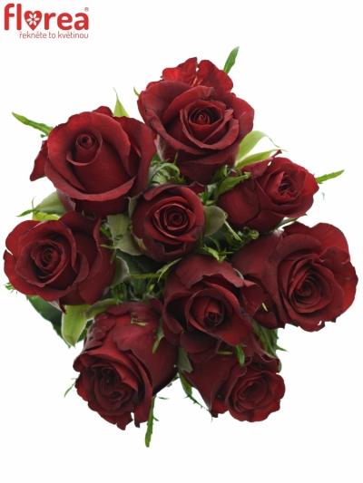 Kytice 9 rudých růží BURGUNDY 50cm