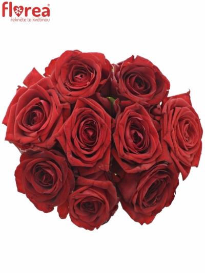 Kytice 9 rudých růží RED NAOMI! 30cm