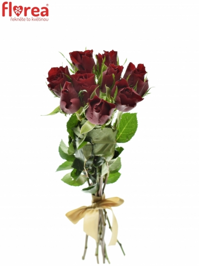 Kytice 9 rudých růží RED TIFFANY