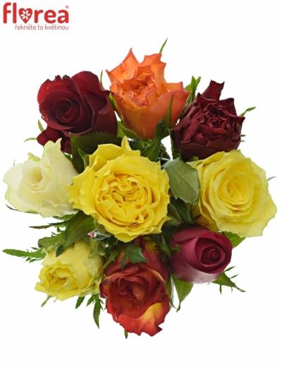 Kytice 9 růží MIX 60cm