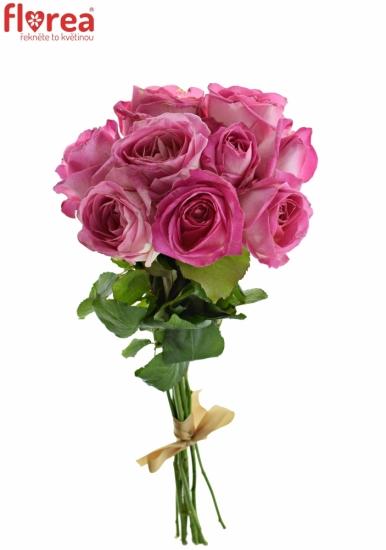 Kytice 9 růžových růží AVALANCHE CANDY+ 60cm
