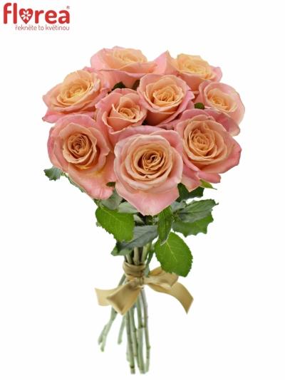 Kytice 9 růžových růží MISS PIGGY
