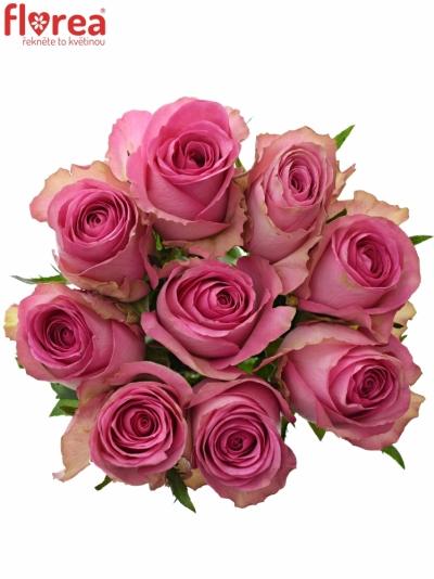 Kytice 9 růžových růží SUPREME+ 50cm