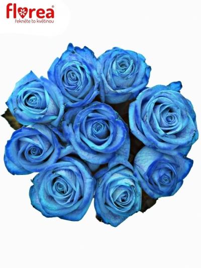 Kytice 9 světle modrých růží LIGHT BLUE VENDELA 60cm