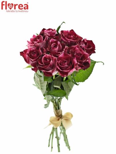 Kytice 9 žíhaných růží RED STORM