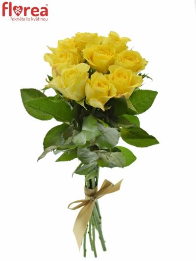 Kytice 9 žlutých růží GOLDEN TOWER 50 cm