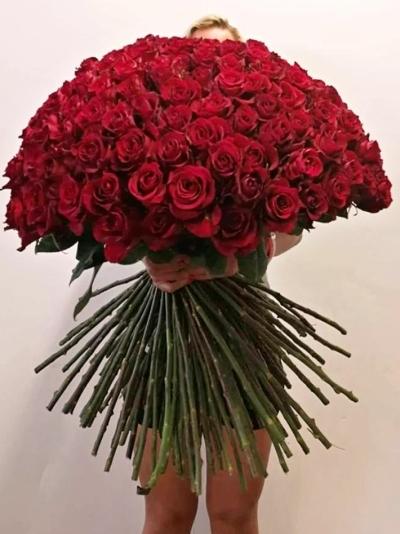 ROSA EVER RED super 100cm (XXL)
